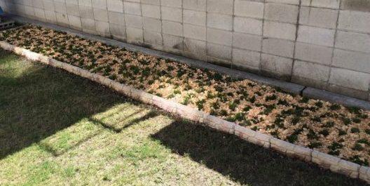 植栽帯にウッドチップを敷いたとき