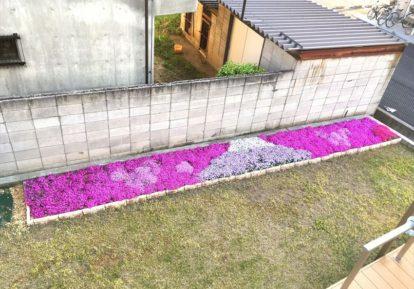 お庭の花壇に素敵な富士山出現